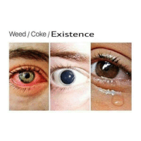 Weed, Coke, and Existence: Weed/Coke/ Existence