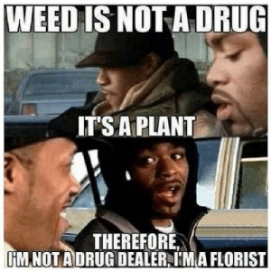 Every small town local drug dealer: WEED IS NOT A DRUG  IT'S A PLANT  THEREFORE  HMNOT ADRUG DEALER,IMA FLORIST Every small town local drug dealer