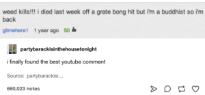 : weed kills!!! i died last week off a grate bong hit but i'm a buddhist so i'm  back  gitmehere1 1 year ago 50  partybarackisinthehousetonight  i finally found the best youtube comment  Source: partybarackisi...  660,023 notes