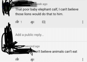 Animals, Facepalm, and Chat: week ago  That poor baby elephant calf, I can't believe  those lions would do that to him  Add a public reply..  second ago  n't believe animals can't eat  4 COmMuNiSm has entered the chat