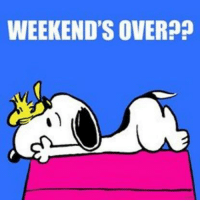 Memes, 🤖, and Weekend: WEEKEND'S OVER??