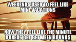 Omg, Tumblr, and Blog: WEEKENDS USED TO FEEL LIK  MINIVACATIONS  NOWTHEYFEELLIKE THE MINUTE-  BOXERS GET BETWEEN ROUNDS omg-humor:Accurate.