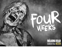 Dank, Walking Dead, and Sunday: WEEKS  WALKING DEAD  RETURNS OCTOBER 11  aMC  SUNDAYS 9/8C Don't live with Walker Withdrawals, the Season 6 premiere is in FOUR WEEKS.   Watch the trailer to get pumped: http://bit.ly/1UBLr4r