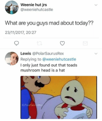 Anime, Head, and Memes: Weenie hut jrs  @weeniehutcastle  What are you guys mad about today??  23/11/2017, 20:27  Lewis @PolarSaurusRex  Replying to @weeniehutcastle  I only just found out that toads  mushroom head is a hat  IG:PolarSaurusRex Top 10 anime plot twists 😪 Follow me for more @PolarSaurusRex
