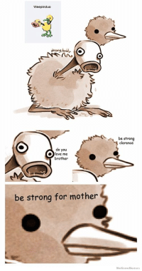 be strong for mother: Weepinduo  be strong  clarence  do you  love me  brother  be strong for mother  We KnowM  emes