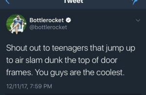 Dunk, MeIRL, and Air: weet  Bottlerocket  @bottlerocket  Shout out to teenagers that jump up  to air slam dunk the top of door  frames. You guys are the coolest.  12/11/17, 7:59 PM meirl