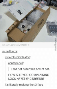 Cuteness overload :3: weheartit.com/entry/1450550  incredibutts:  mrs-loki-hiddleston.  acute pencil  I did not order this box of cat.  HOW ARE YOU COMPLAINING  LOOK AT ITS FACEEEEEEE  it's literally making the :3 face Cuteness overload :3