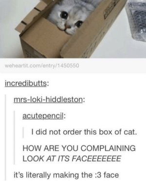 :3: weheartit.com/entry/1450550  incredibutts:  mrs-loki-hiddleston:  acutepencil:  I did not order this box of cat.  HOW ARE YOU COMPLAINING  LOOK AT ITS FACEEEEEEE  it's literally making the :3 face :3