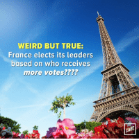 What sort of backwards, archaic system is this?: WEIRD BUT TRUE:  France elects its leaders  based on who receives  more votes?  CAFE What sort of backwards, archaic system is this?