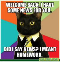 WELCOME BACK. HAVE  SOME NEWS FOR YOU.  DIDISAY NEWSP I MEANT  HOMEWORK  BIGB SCBOOL MEMES