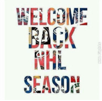WELCOME  BACK  NHL  SEASON