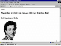 Internet Explorer: Welcome Friend Microsoft Internet Explorer  Eile Edt iew Favorites looks Help  H Back  A ea Search Favorites  History  Address leh hitpc//www.geocities.com/TelevisionCity/2756/  HTML  Man,this website sucks ass  at least so far)  Bob Saget says: Hello!  Done, but with errors on page.  AStart le welcome Friend Mic...  Internet  Links  1734