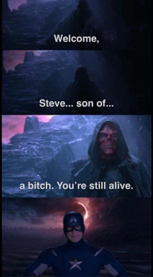 Alive, America, and Ass: Welcome,  Steve... son of.  a bitch. You're still alive. srsfunny:  America's Ass