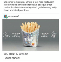 Fast Food, Food, and God: Welcome to Australia! Where a fast food restaurant  literally made a mirrored reflective sea-gull proof  packet for their fries so they don't god damn try to fly  down and steal your fries.  dave-mau5  LIGHT  FRIGHT  YOU THINK IM JOKING?  LIGHT? FRIGHT! there's this kid named gavin at my summer camp who's honestly so pure he deserves everything @be.toy