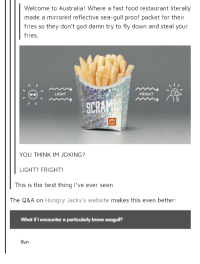 Fast Food, Food, and God: Welcome to Australia! Where a fast food restaurant literally  made a mirrored reflective sea-gull proof packet for their  fries so they don't god damn try to fly down and steal your  fries.  LIGHT  FRIGHT  SCR  YOU THINK IM JOKING?  LIGHT? FRIGHT  This is the best thing lI've ever seen  The Q&A on Hungry Jacks's website makes this even better:  What if I encounter a particularly brave seagull?  Run Welcome to Australia!