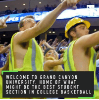 As far as student sections go, Grand Canyon University is as good as it gets 👀 (➡️ @mcdonalds): WELCOME TO GRAND CANYON  UNIVERSITY, HOME OF WHAT  MIGHT BE THE BEST STUDENT  SECTION IN COLLEGE BASKETBALL  TT  NTNE  0AEK  YHDS  WUA-  A, TB  CFS  0E  D TG  NESE  AMEL  ROBL  TYTN  ElE  MSBN  RO  OET  C_HT  VHT  LIGC  ENIE  WUMS As far as student sections go, Grand Canyon University is as good as it gets 👀 (➡️ @mcdonalds)