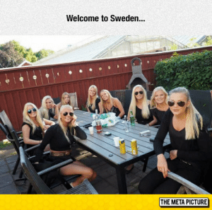 Sweden, Meta, and Picture: Welcome to Sweden..  THE META PICTURE Ctrl C, Ctrl V (i.redd.it)