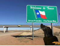 Yeah? No? :P Back up IG: @dogmeat_is_good_meat2 fallout ps4 bethesda zenimax xbox godhoward comedy dankmemes lol instadaily fallout4 vaultboy smile game playstation sony funny falloutshelter meme texas: Welcome to Texas  Drive Friendly -The Texas Way  CND Yeah? No? :P Back up IG: @dogmeat_is_good_meat2 fallout ps4 bethesda zenimax xbox godhoward comedy dankmemes lol instadaily fallout4 vaultboy smile game playstation sony funny falloutshelter meme texas