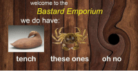 Bastard, Nifty, and Exhibition: welcome to the  Bastard mponum  we do have  tench these ones oh no A nifty exhibition