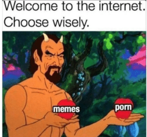 Internet, Memes, and Porn: Welcome to the internet.  Choose wisely.  memes  porn Choices via /r/memes https://ift.tt/2LSiQ9b