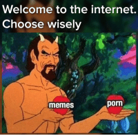 Internet, Memes, and Porn: Welcome to the internet.  Choose wisely  memes  porn Choose.