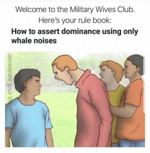 Club, Book, and How To: Welcome to the Military Wives Club.  Here's your rule book:  How to assert dominance using only  whale noises  decelerate your lie