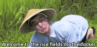 Rare footage of a Vietnamese ambush on American soldiers (1962 Colourised) 1962: Welcome to the rice fields motherfucker Rare footage of a Vietnamese ambush on American soldiers (1962 Colourised) 1962