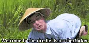 Soldiers, American, and Vietnamese: Welcome to the rice fields motherfucker Rare footage of a Vietnamese ambush on American soldiers (1962 Colourised)
