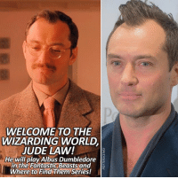 Welcome to the Wizarding World! – Pottermore announced today that he has been cast as Albus Dumbledore in the next Fantastic Beasts film! – You might have seen Jude Law in films like The Grand Budapest Hotel, Spy, Anna Karenina, Sherlock Holmes and The Holiday! – What are your thoughts on the casting? I personally love it!: WELCOME TO THE  WIZARDING WORLD  JUDE LAW!  He will play Albus Dumbledore  in the Fantastic Beastsand  Where to Find Them Series! Welcome to the Wizarding World! – Pottermore announced today that he has been cast as Albus Dumbledore in the next Fantastic Beasts film! – You might have seen Jude Law in films like The Grand Budapest Hotel, Spy, Anna Karenina, Sherlock Holmes and The Holiday! – What are your thoughts on the casting? I personally love it!