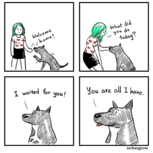 You are all I have via /r/wholesomememes https://ift.tt/337s3Dm: Welcome  what did  l home!  you do  todoy?  T waited tor you!  You are all I have  seebangnow You are all I have via /r/wholesomememes https://ift.tt/337s3Dm