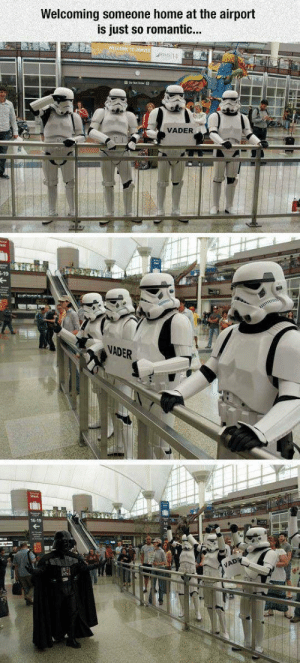 Home, Him, and Vader: Welcoming someone home at the airport  is just so romantic...  VADER  -19  NADER  16-19 Will they chauffeur him away in the Executor? (i.redd.it)