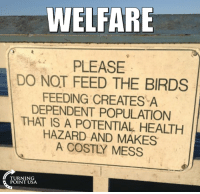 Memes, Birds, and The Birds: WELFARE  PLEASE  DO NOT FEED THE BIRDS  FEEDING CREATES A  DEPENDENT POPULATION  THAT IS A POTENTIAL HEALTH  HAZARD AND MAKES  A COSTLY MESS  TURNING  POINT USA Hmm... Sounds A Lot Like Welfare! #BigGovSucks