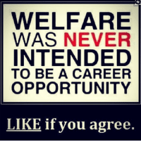 Memes, Opportunity, and Never: WELFARE  WAS NEVER  INTENDED  TO BE A CAREER  OPPORTUNITY  LIKE if you agree. Like and share if you agree!