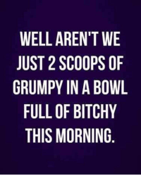 Good Morning, Good, and Images: WELL AREN'T WE  JUST 2 SCOOPS OF  GRUMPY IN A BOWL  FULL OF BITCHY  THIS MORNING 35 Good Morning Quotes With Images and Good Morning Messages 21