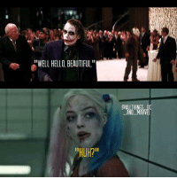 """You guys want a dk trilogy review? I love all of the dk's and heath ledgers joker is definitely my favorite part-Captain America thedarkknight tdk suicidésquad harleyquinn joker heathledger margotrobbie dc dccomics christophernolan trilogy memes meme funnymemes funny hilarious lol imdying imdead: WELL HELLO BEAUTIFUL""""  """"HUH?  DALL THINGS DC  AND MARVEL You guys want a dk trilogy review? I love all of the dk's and heath ledgers joker is definitely my favorite part-Captain America thedarkknight tdk suicidésquad harleyquinn joker heathledger margotrobbie dc dccomics christophernolan trilogy memes meme funnymemes funny hilarious lol imdying imdead"""