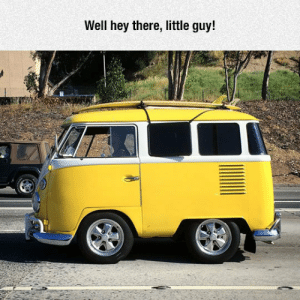 Club, Tumblr, and Blog: Well hey there, little guy! laughoutloud-club:  An Ancestor To The Short Bus