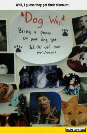 Tumblr, Blog, and Guess: Well, I guess they got their discount...  Dog WL  ALL  ring a photo  of your dog. ge  $1.00 off your  Purchase  THE META PICTURE lolzandtrollz:Photo Of Your Dog