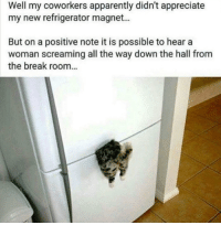Apparently, Dank, and Appreciate: Well my coworkers apparently didn't appreciate  my new refrigerator magnet...  But on a positive note it is possible to hear a  woman screaming all the way down the hall from  the break room.