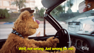 The Muppets, Tumblr, and Wow: Well, not wrong. Just wrong for me.  City siryouarebeingmocked: perkachow:  sandandglass: The Muppets s01e01 Fozzy getting hit on by lots of twinks  …Wow.