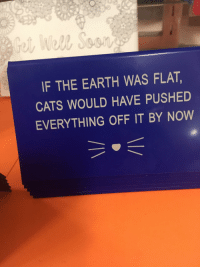 Cats, Earth, and Now: Well Sesn  IF THE EARTH WAS FLAT,  CATS WOULD HAVE PUSHED  EVERYTHING OFF IT BY NOW Checkmate