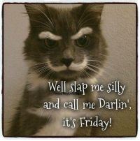 Well slap me silly and call me darling, it's Friday    #cat: Well Slap me Silly  and call me Darlin',  its Friday! Well slap me silly and call me darling, it's Friday    #cat