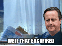 Cameron after the Brexit poll.: WELL THAT BACKFIRED  inngflip.com Cameron after the Brexit poll.