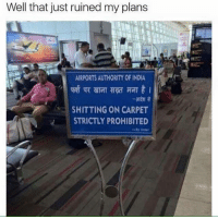 Memes, India, and Prohibition: Well that just ruined my plans  AIRPORTS AUTHORITY 0F INDIA  SHITTING ON CARPET  STRICTLY PROHIBITED  By Order Z