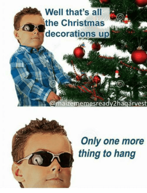me_irl: Well that's all  the Christmas  decorations up  @maizememesready2hagarvest  Only one more  thing to hang me_irl