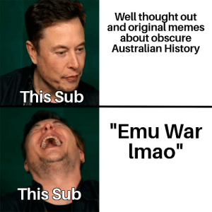 """Memes, History, and Thought: Well thought out  and original memes  about obscure  Australian History  This Sub  """"Emu War  Imao  This Sub How I foresee this week's contest going"""
