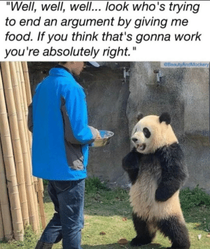 "Memes I've sent my boyfriend 17/infinity: ""Well, well, wel... look who's trying  to end an argument by giving me  food. If you think that's gonna work  you're absolutely right.""  @BeautyAndMockery Memes I've sent my boyfriend 17/infinity"