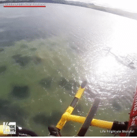 Life, Memes, and Flight: Wellington  WS  New Ze  Life Flight via Storyful RESCUED: A pilot was saved after his helicopter crashed into the water in NewZealand. The pilot, who had trouble undoing his seat belt after impact, was airlifted to safety.