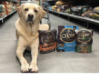 Load up your shopping cart this weekend so your pup has fun meals next week! NoMoreBoringBowls WellnessCORE Friday TGIF: WELLNESS  WELLNESS  GRAIN FREE PROTEIN RICH  RAWRE  MIKER TOPPER  PURE  TENDER BIT  OCEAN Load up your shopping cart this weekend so your pup has fun meals next week! NoMoreBoringBowls WellnessCORE Friday TGIF