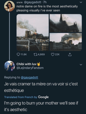 Dank, Fire, and Google: wen @gaygadott 7h  notre dame on fire is the most aesthetically  pleasing visually i've ever seen  11.8K t04,869 22K  Chibi with luv  aLejindaryFandom  υν  Replying to @gaygadott  Je vais cramer ta mère on va voir si c'est  esthétiquee  Translated from French by Google  I'm going to burn your mother we'll see if  it's aesthetic Please burn me instead by Person_To_Your_Left MORE MEMES