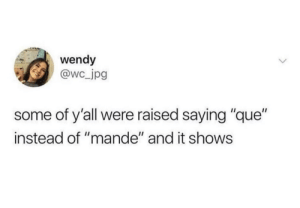 "¿¡Que?!: wendy  @wc_jpg  some of y'all were raised saying ""que""  instead of ""mande"" and it shows ¿¡Que?!"